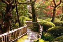 Japan / by April Jennings