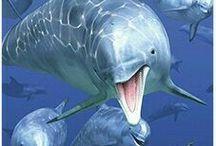 Peixes e Animais Marinhos