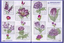 separador lili
