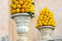 limoni centrotavola