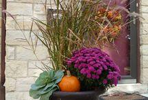 Garden planters - Fall