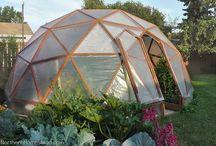 Garden::Polytunnel