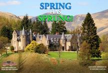 Castles in Spring!