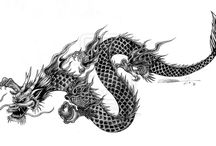 Dragons&Roosters / Tattoo inspiration