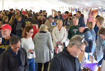 Harbor Springs Beer Festival / Information about the Harbor Springs Beer Festival