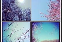 My Photo-Art Walks