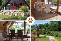 Das hundefreundliche Ferienhaus des Monats / Der liebe Vierbeiner gehört für viele Urlauber zur Familie und ist in diesen Ferienhäusern & Ferienwohnungen ein gern gesehener Gast.