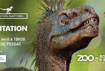 Zoo de Bordeaux-Pessac