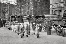 Union Square in New York
