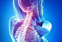 Highlands Ranch Neck Pain / Fast Neck Pain relief in Highlands Ranch.   Premier Chiropractic.
