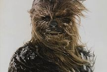 ch 彡 chewbacca / chewbacca   star wars [yes i have a board for chewie]