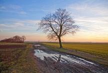#Nature #Scenery