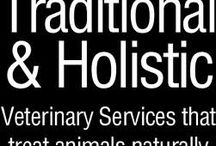 Alabama Vets Who Practice One or More Modalities of Holistic Veterinary and Integrative Medicine / http://www.bestcatanddognutrition.com/roger-biduk/list-of-900-u-s-holistic-integrative-veterinarians/.  Ask EVERY vet these 11 questions: http://www.bestcatanddognutrition.com/roger-biduk/eleven-questions-to-ask-every-veterinarian/
