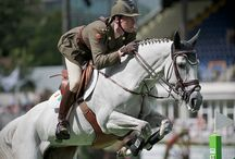 Dublin Horse Show (5 - 9 August 2015) / Ireland's top show jumping event takes place in the RDS Arena, right next door to our hotel. Look out for the world's top international show jumpers competing at the highest level. Relax afterwards in ICE bar or enjoy casual, sophisticated dining in one of the many all-day dining options.