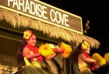 Aloha / Ideas for trips to Hawaii