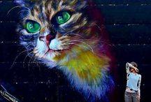 graffiti gatos