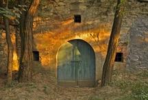 Hungarian Wine Cellars