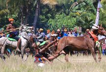 Pasola Festival,Sumba island / Pasola Festival, Sumba island The Pasola Festival is an original war ritual for giving thanks to the ancestral spirits in the region of West Sumba, East Nusa Tenggara. Therefore two groups of 25 men each, mostly from the upper and the lower village, are fighting each other while riding horses and throwing their wooden spears toward the opponent.
