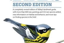 Bird Guides to Know About / Great birding guides