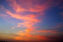 Pretty sky..pretty trees...:) / by Fallon Beatham-Torrez