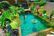 Pool Pond Ideas for Inspiration