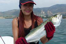 Artículos de pesca