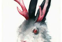 Funny bunny / by Jacque Horabik