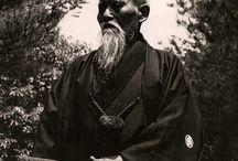 Aikido Art / The gentle art of Aikido