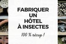 Hôtel à. Insectes