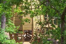 Une forêt de cabanes