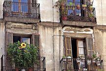 Spain  / by Basel