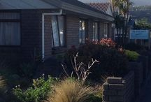 Motels & Motor Lodges in Petone / Foreshore Motor Lodge - Petone Bed and Breakfast,Accommodation in Petone, Hotels & Motels, and Travel and Lodging