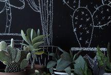 chalkboard inspo