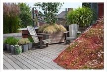 Jardin terraza 1 / Home deco