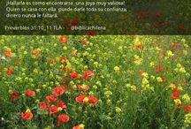 Proverbios 31, la mujer ejemplar / by Sociedad Biblica Chilena