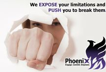 Phoenix Power Coaching / Engage, commit, empower by building strength and resilience, promoting wellness and achieving optimal health – both physical and psychological.