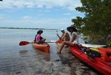 Winter kayak and paddle boarding / This is what the employees are doing during the winter months.  Provincetown Aquasports is kayaking and paddle boarding in the Florida Keys