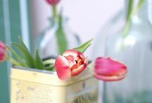 GEM:Flowers / A Wonderful flower / by Gem .