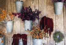 Fall Planters / by terrain