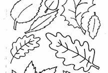 Window color Herbst