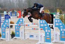 Ambassadeurs / Découvrez les Ambassadeurs Horse Pilot
