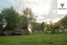 Sat Indian @Natura Parc / 28 de corturi indiene Dotări: - grup sanitar comun / wc - curent electric - foc de tabără Tarif: 50 lei/zi/cort