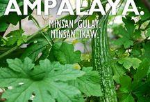 Minsan Ikaw series^^ credit to owner ^^