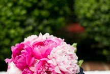hot pink + navy + gold / by Barbara Anderson