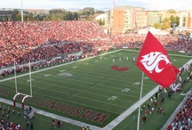 Go Cougs! / A collection of Washington State University photos showing my Cougar Pride. / by Jason Krump