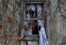 Estaciones y ventanas / Diferentes estéticas que aportan las estaciones del año a las ventanas que nos acompañan.