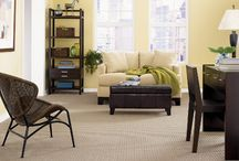 Carpet / Some Examples of Carpet products that we carry.