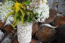 Wedding Ideas / by Kristie Harrington