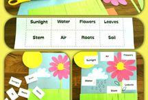 Gardening Preschool Fun!!! / by Vicky Engdahl