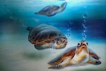 Marine - Sea Turtles / by Neadeen Masters
